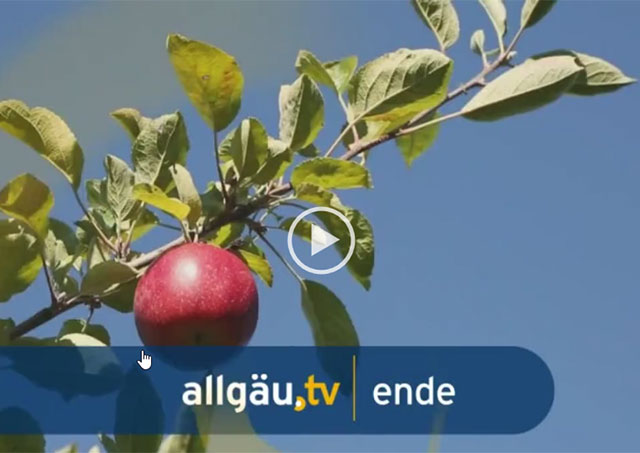 allguatv abk feature